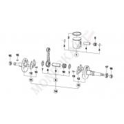 Gabbia biella 18mm per Mini / Baby TM 60cc 05/VO/20
