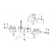 Biella nuda per Mini / Baby TM 60cc 05/VO/20
