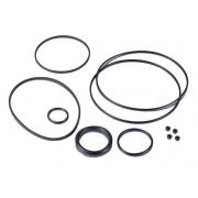 Oring Kit OR Motor Modena KZ KK1 MKZ, MONDOKART, Seals & Oring