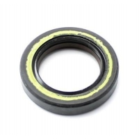 Oil Seal FPJ 25x38x7 Double Teflon lip