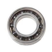 Koyo Bearing 6005 C4 (Polyamide), MONDOKART