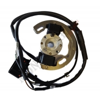 Ignition Selettra Mini 60cc (from 2010 to 2019)