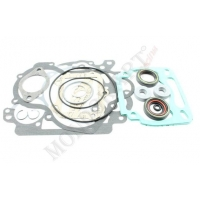 Kit gaskets and Orings Rotax