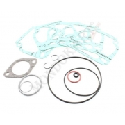Kit oring and gaskets cylinder Rotax, MONDOKART, Cylinder Rotax
