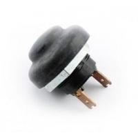 Power-Taste Rotax Max (für Motoren vor 2014)