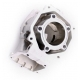 Complete cylinder Rotax Micro - Mini - Junior (NO VALVE)