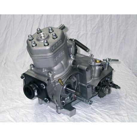 Motor KZ Revisado Pavesi, MONDOKART, kart, go kart, karting