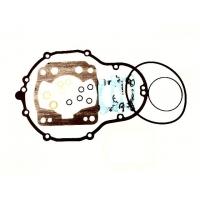 Gasket Kit Iame Screamer KZ