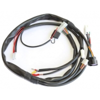 Complete Wiring IAME X30 (Until 2015)