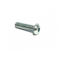Screw Rounded Head M5x20 mm