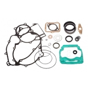 Gasket Set Kit complete Rotax DD2, MONDOKART, Crankcase Rotax