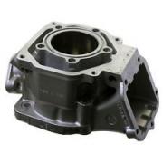 Zylinder Rotax DD2 3D, MONDOKART, kart, go kart, karting, kart