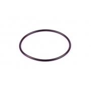 Torica Oring filtro aire de esponja Rotax DD2 EVO, MONDOKART