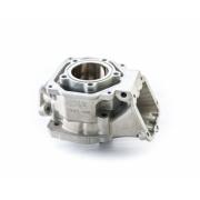 Complete cylinder Rotax Max, MONDOKART, Cylinder Rotax MAX