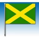 Bandera verde con cruz amarilla, MONDOKART, kart, go kart