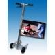 Push Chariot OK - OKJ - Push Cart démarreur à entraînement