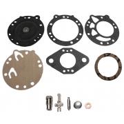 Kit Revisione Completa Tillotson (RK-114 HL) - HL-166 - HL-351A
