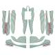 Kit adesivi TonyKart OTK Rookie 60 Mini / Baby per carenature