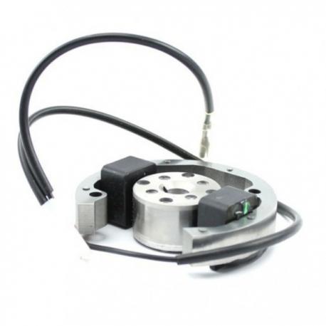 Accensione Selettra Mini 60cc ( X30 Waterswift), MONDOKART
