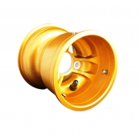 Cerchio Anteriore Mondokart Standard Magnesio GOLD
