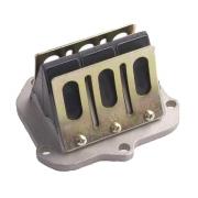 Pacco lamellare completo Originale Rotax EVO20, MONDOKART