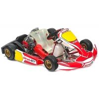 Completa Kart Birel Easykart 60cc NUEVO !!