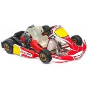 Komplette Kart Birel Easykart 60cc NEU!!, MONDOKART, kart, go