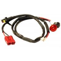 Faisceau Electronique Câblage pour Iame X30