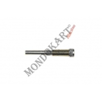 Screw for double diameter pedal (8-10) Allen