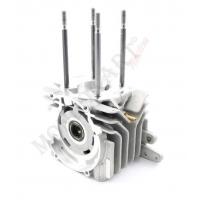 Carter comprehensive Minirok 60cc bearing Minirok 60cc Vortex