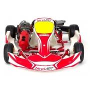 Kart Completa Mini KGP BirelArt C28-Y 60cc, MONDOKART, kart, go