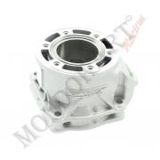 Complete cylinder 125cc Vortex DVS, MONDOKART, Cylinder &