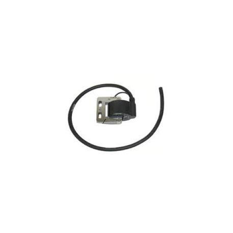 Selettra IAME Easykart Coil, MONDOKART, Ignition Easykart 125