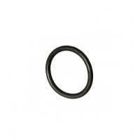 O-ring coppia frizione TM