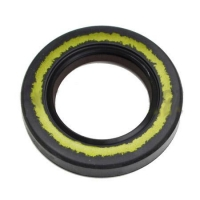 Oil Seal 25x40x7 Double Teflon lip