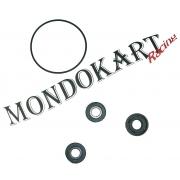 Kit Reparation Pompe à eau Elto, MONDOKART, kart, go kart
