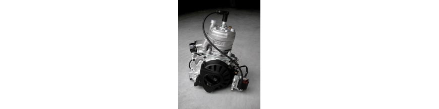 Pistons pour 125cc XTR