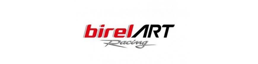 Overhaul kit BirelArt