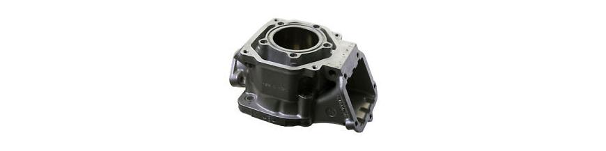 Zylinder Rotax DD2