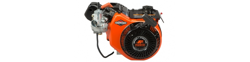 Motoren Briggs & Stratton