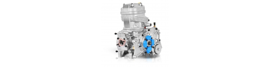 Iame X30 125cc TAG